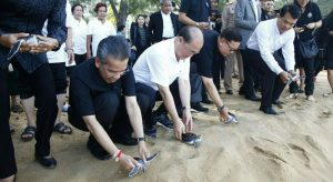 Phuket Ombudsman's office hosts turtle release for World Turtle Day | News by Samui Times