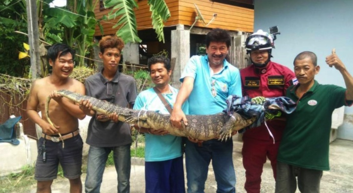 "Lottery fever – rush to get rich as ""auspicious"" 100 kilo water monitor set to bring fortune! 