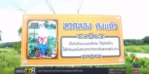 Touching Tribute: Sweet Thai grandpa donates land to build road in honor of late wife | News by Samui Times