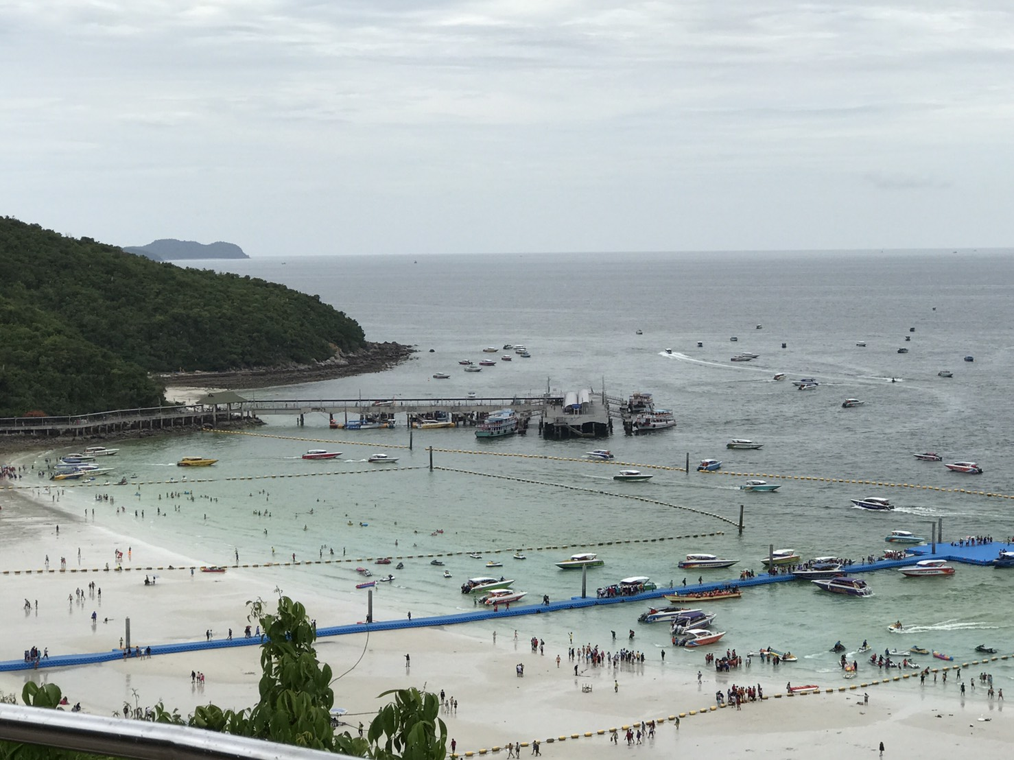 "Tourism operators putting on a brave face as ""plankton bloom"" moves onto Koh Larn 