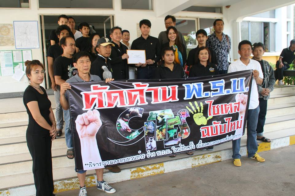 Bird breeders in Surat Thani oppose draft bill on wildlife protection | Samui Times
