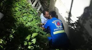 Phuket drunk rescued after falling in ditch while taking a pee | News by Samui Times