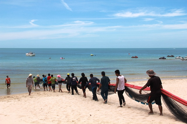 OZO Chaweng Samui joins a pilot project to protect tourists from jellyfish on Chaweng Beach | Samui Times