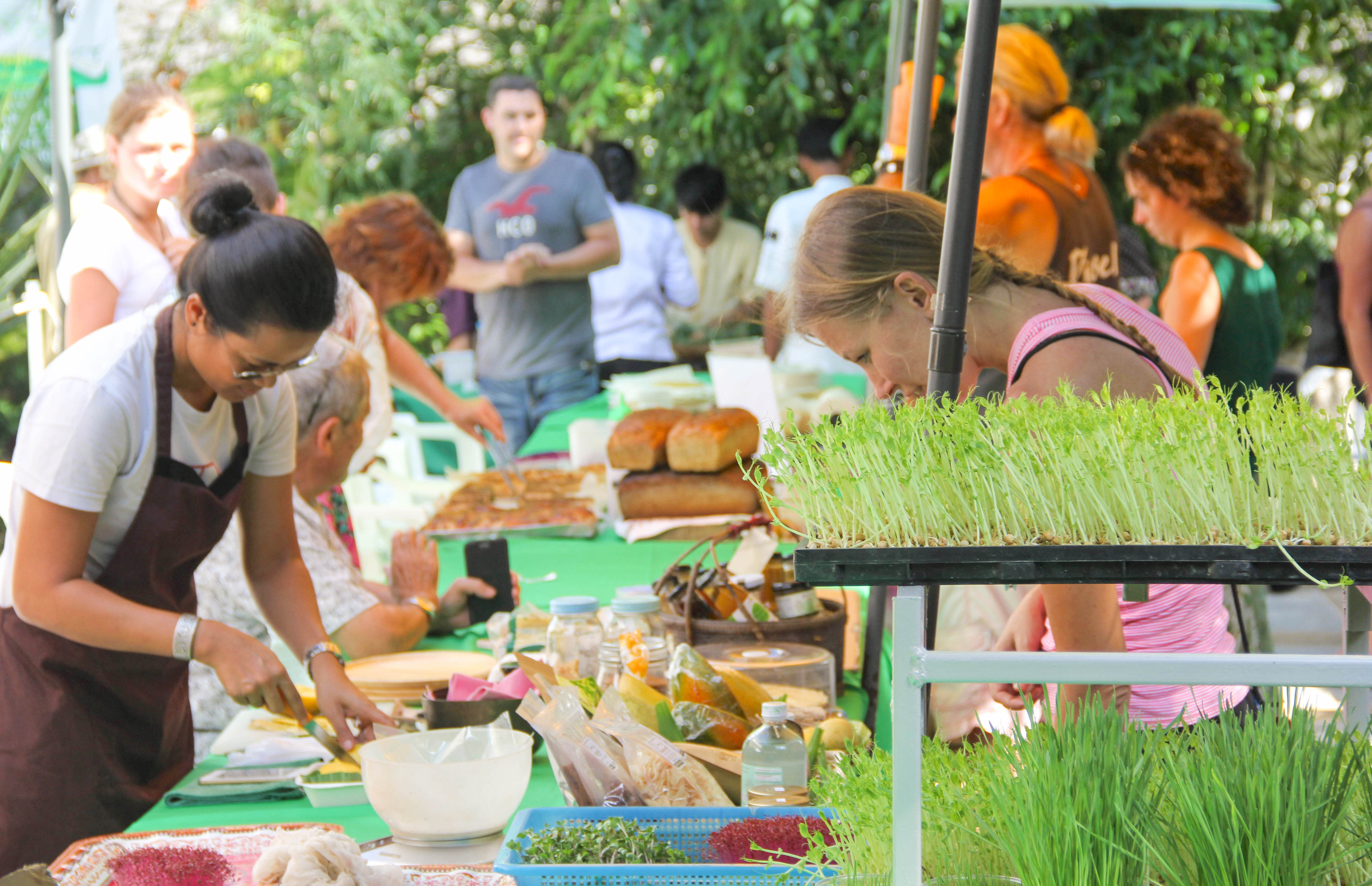 THE GREEN MARKET SAMUI – 13TH AUGUST – it's more than a market, it's a get-together.. | Samui Times