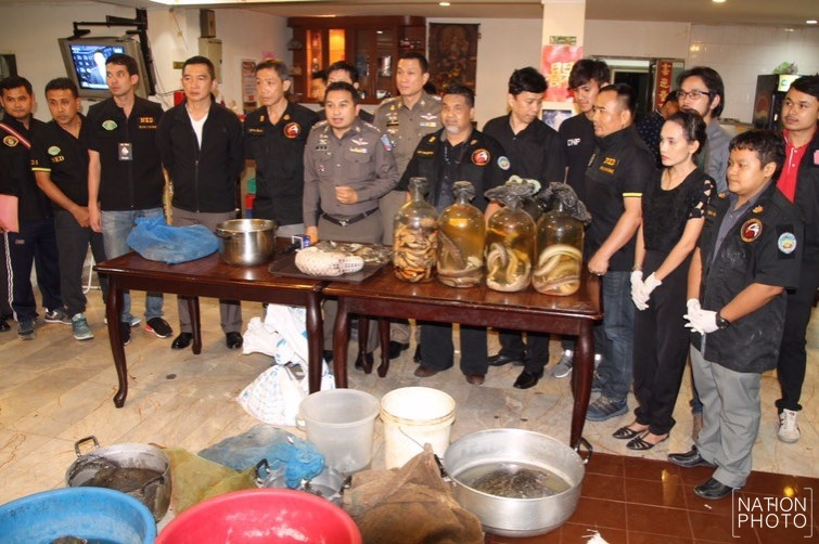 What a load of cobras! Seven arrested in raid on endangered species' restaurant in downtown Bangkok | Samui Times