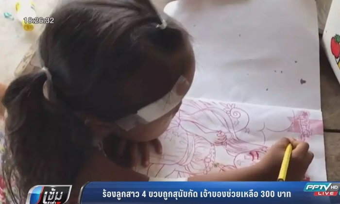 Dog owner takes responsibility for mauling of little girl – here's 300 baht | Samui Times