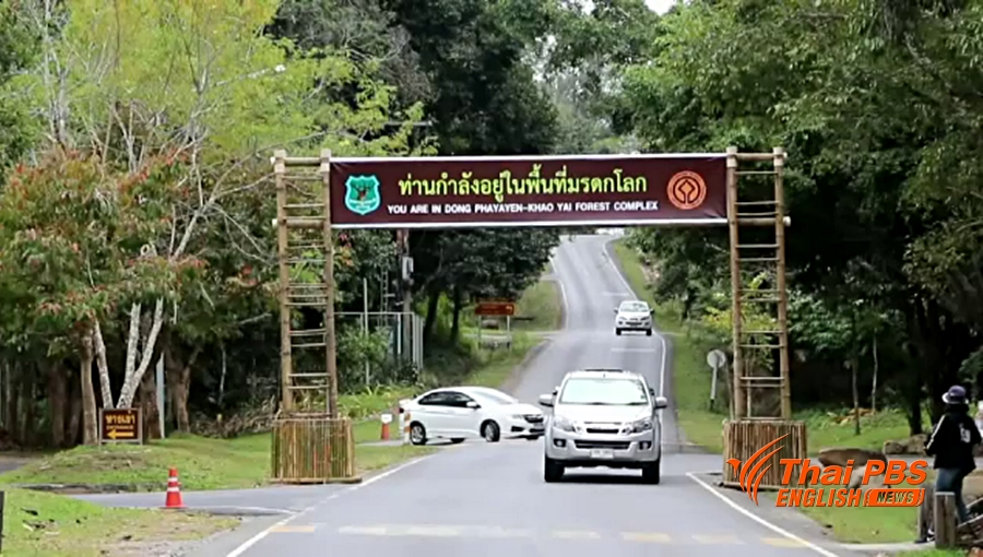 Pets not allowed into national parks | Samui Times