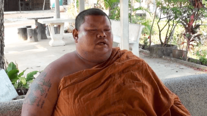 Please Don't Feed Junk To Chunky Monks: Health Min | Samui Times