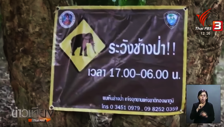 """Disaster zone"" proposed for areas attacked by wild elephants 