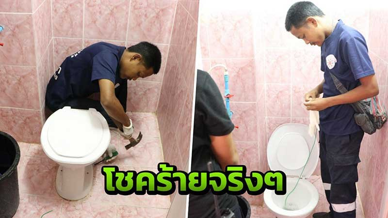 """Very, very unlucky!"": Python in toilet bites Thai woman on the bottom 