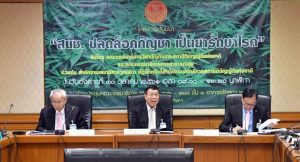 New technology 'will efficiently keep tabs on marijuana in the country'   News by Samui Times