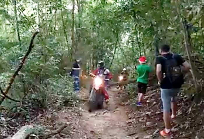 Now it's foreigners riding motorbikes on the footpaths – in the Thai jungle! | Samui Times