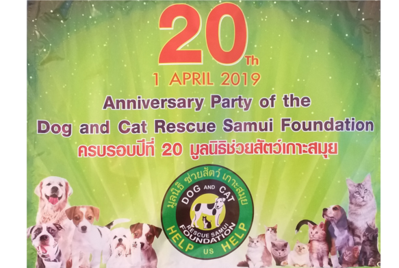 20th Anniversary of the Dog and Cat Rescue Samui Foundation on the 1st APRIL 2019 | News by Samui Times