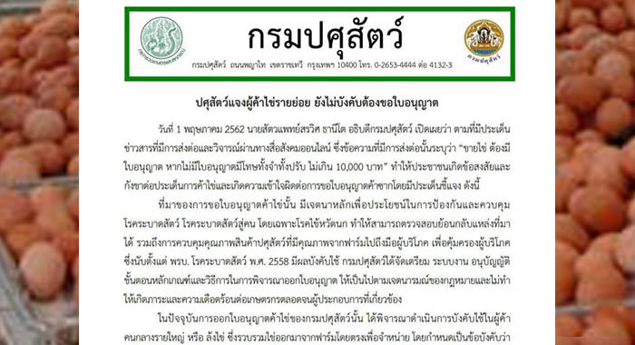 Thai authorities: Small traders don't need a licence to sell eggs | Samui Times