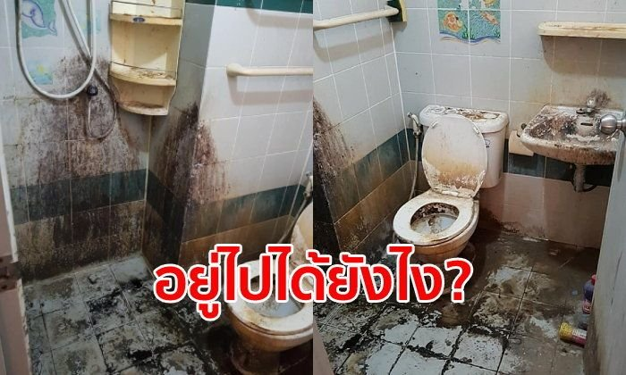 Tenant left toilet like this – landlady reckons he never cleaned once in 9 years! | Samui Times