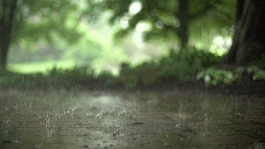 Meteorological Dept: Many areas to experience heavy rain next week until early June   Samui Times