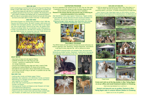 Dog and Cat Rescue Samui Foundation May 2019 | Samui Times