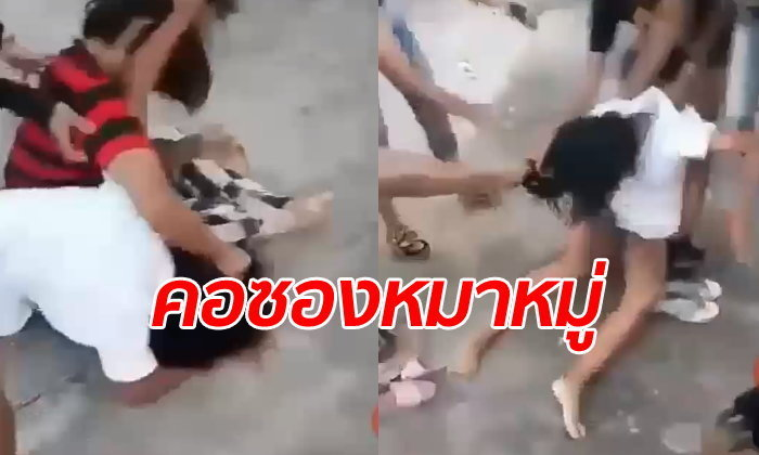 "Secondary student set upon by female ""pack of dogs"" 
