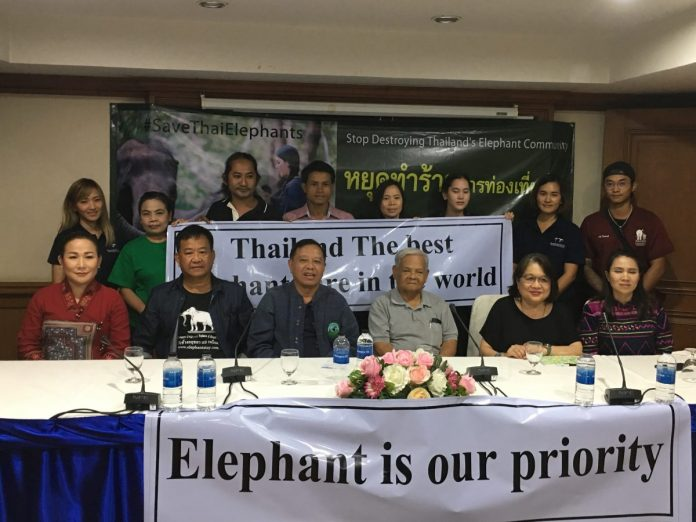 Elephant farm operators defend accusations from foreign media | Samui Times