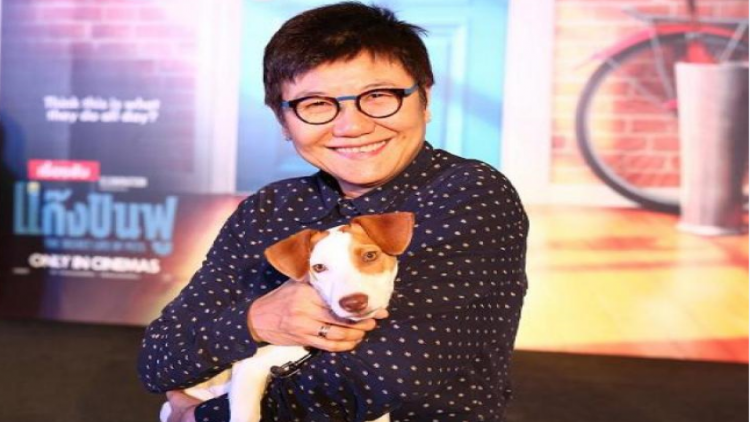 Pet business reaches Bt40 billion as people indulge their darlings | Samui Times