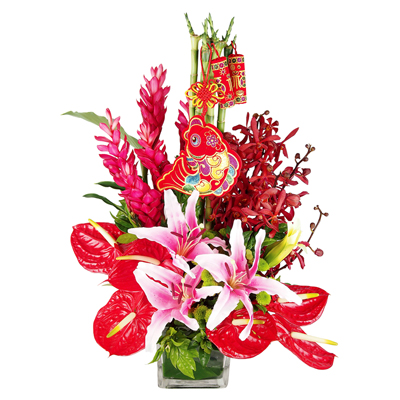 Pick the Right Flowers for Different Occasions | News by Samui Times