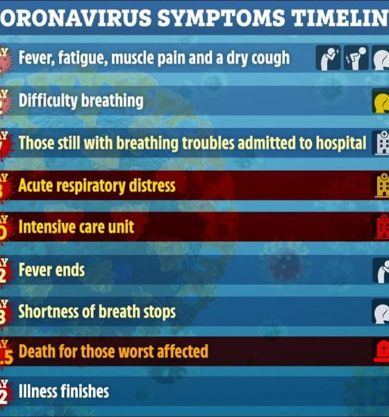 Koh Samui's first Covid-19 case – timeline of infection | Samui Times